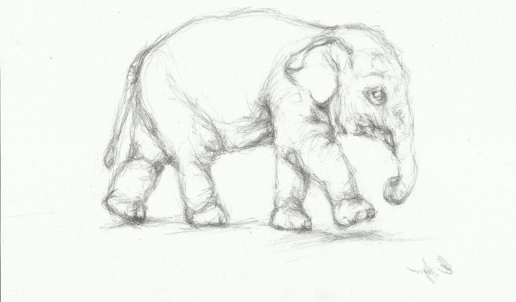 1024x600 Pencil Drawing Images Animals Gallery Animals Pencil Sketch