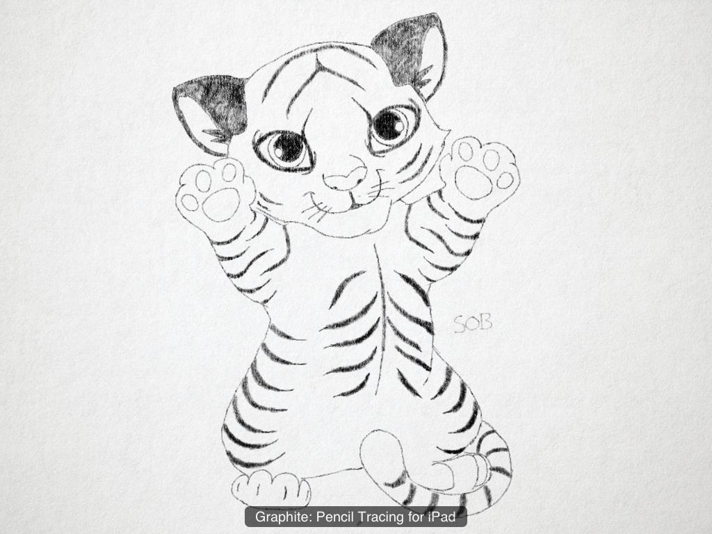 1024x768 Photos Easy Tiger Pencil Drawings,