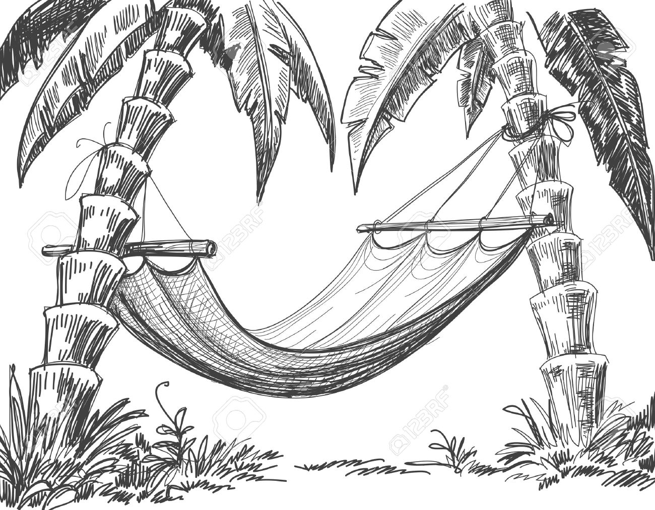 1300x1014 Palm Tree Pencil Drawing Sketches Of Tropical Islands