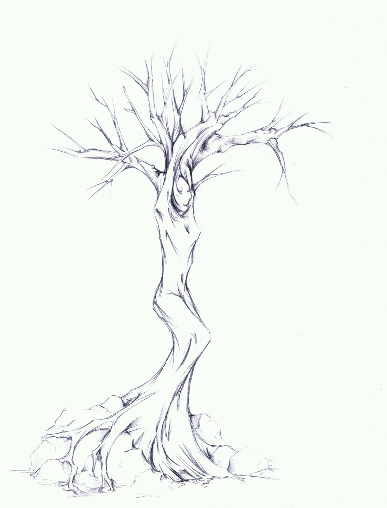 781x1024 Pencil Sketch Of Trees Pencil Drawing Tree Pencil Sketch Drawing