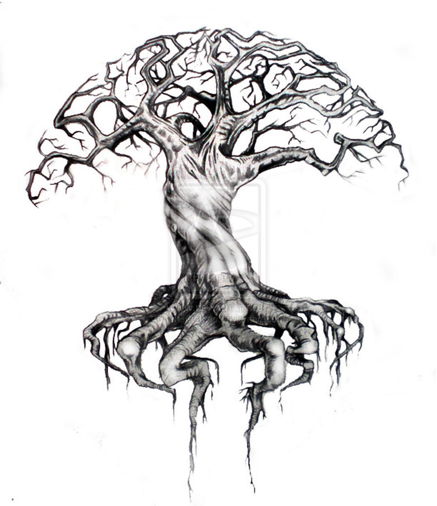 900x1041 25 Beautiful Tree Drawing Examples From Around The World