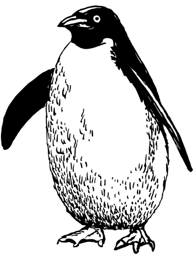 380x500 Penguin Drawing Public Domain Vectors
