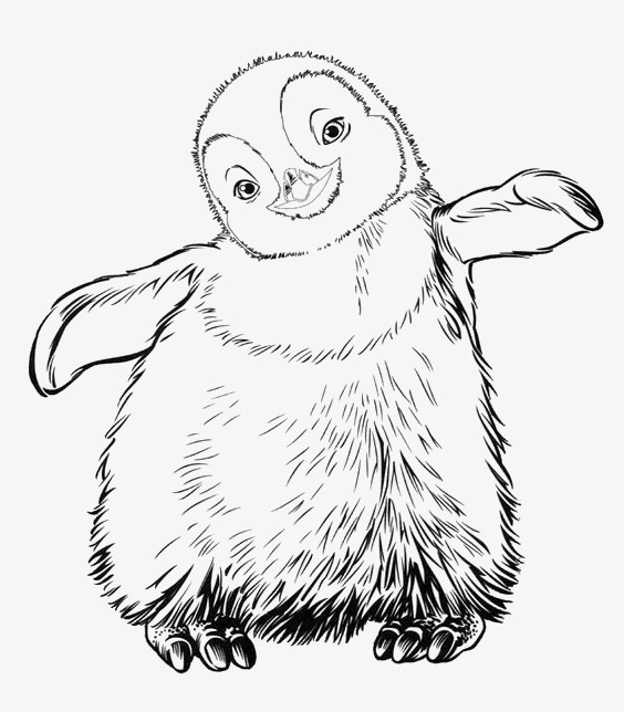 564x644 Cartoon Penguin, Penguin, Animal, Lovely Png Image For Free Download