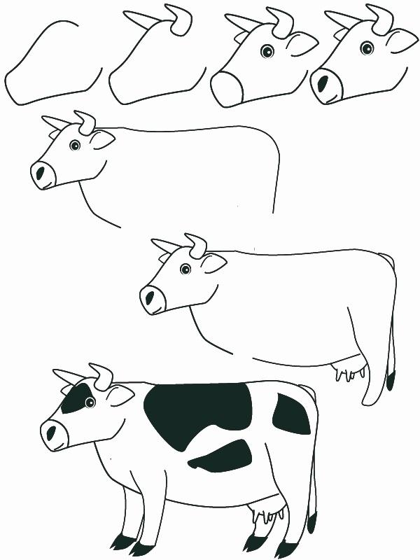 600x800 Animales Dibujar Facil Como Dibujar Un Vaca Paso A Paso