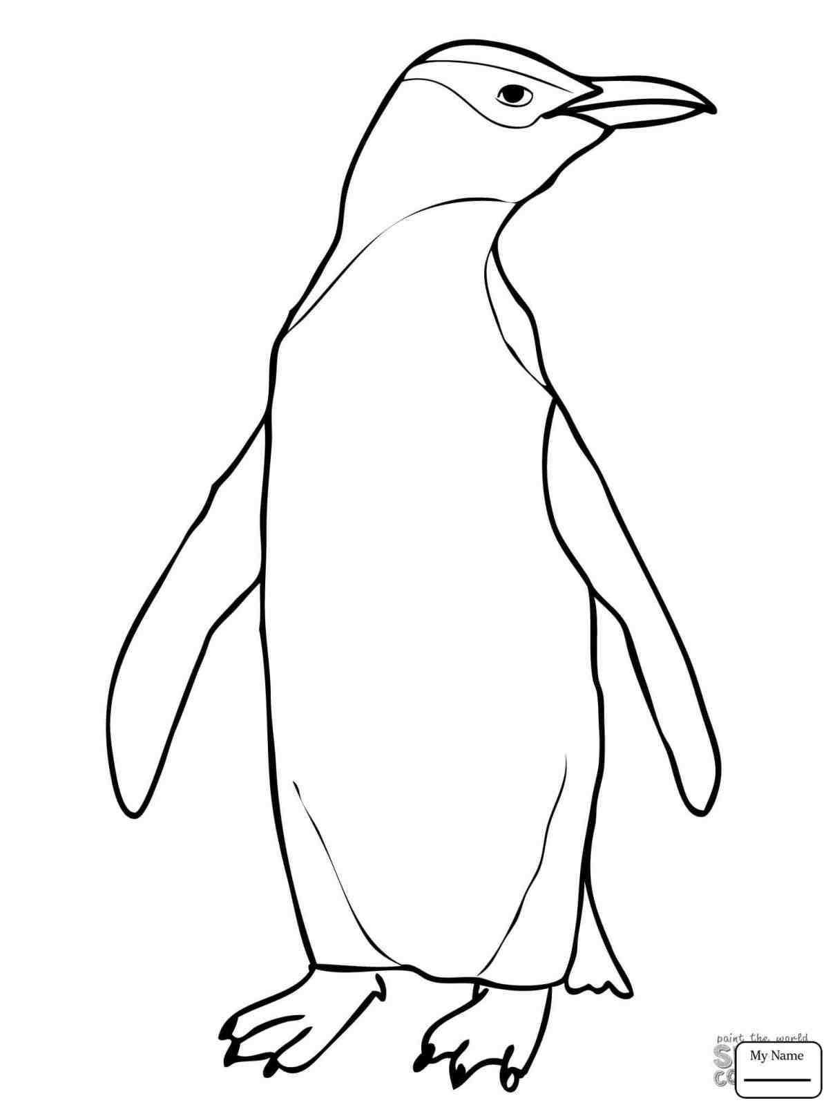 1209x1612 Cute Drawings Of Baby Penguins