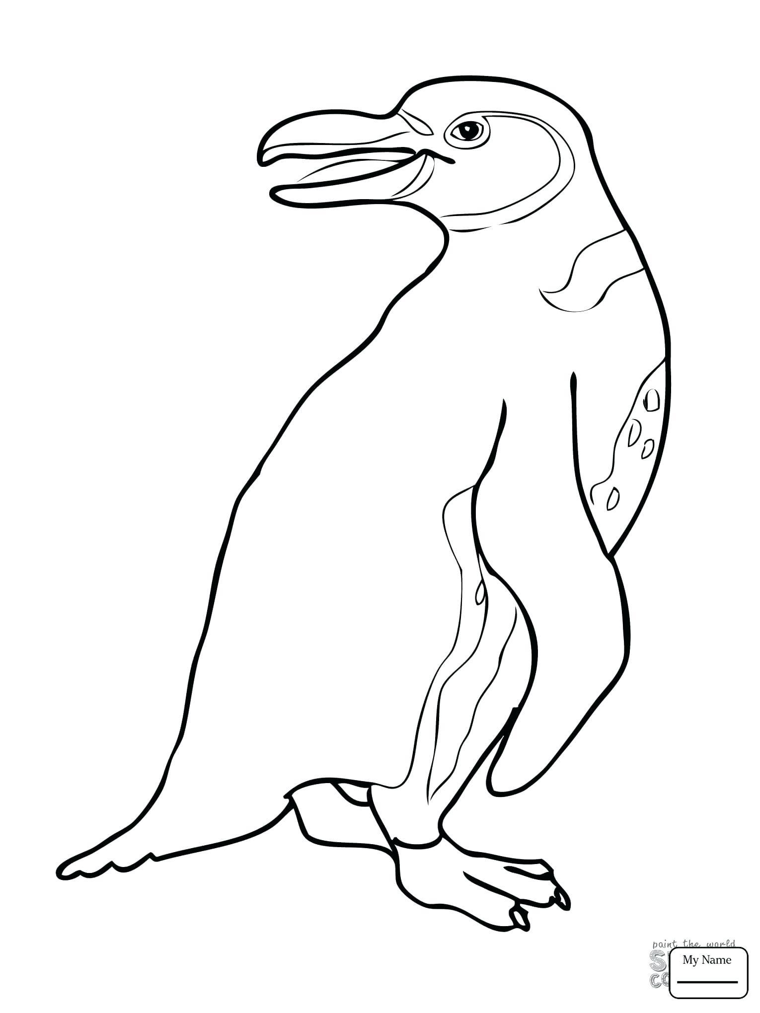 1530x2040 Coloring Cute Penguin Coloring Pages Cartoon. Cute Penguin