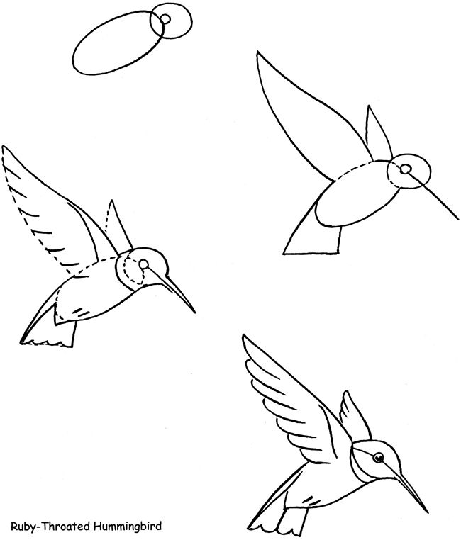 650x762 Welcome To Dover Publications Dibujos Dover