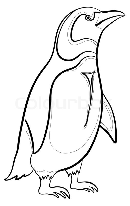 507x800 Antarctic Emperor Penguin, Black Contours On White Background