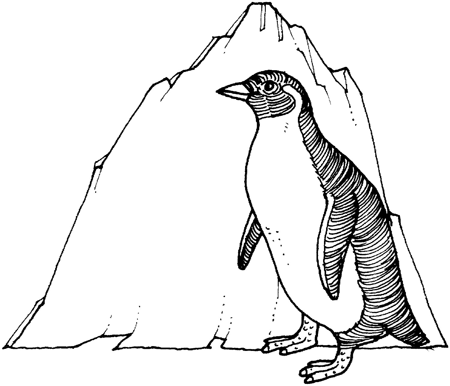 Penguin Line Drawing at GetDrawings.com | Free for personal use ...