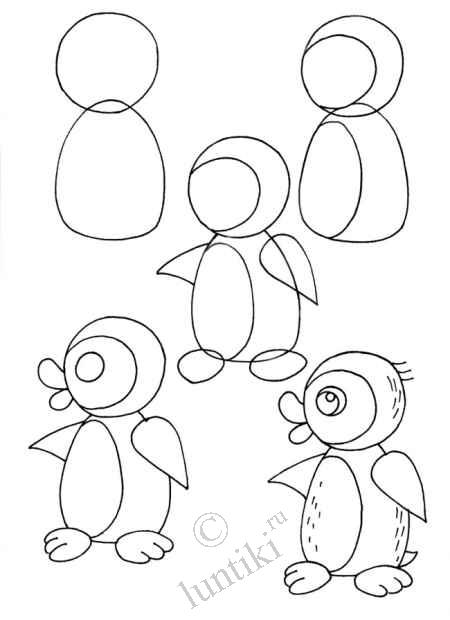 Penguins By Step By Step Drawing