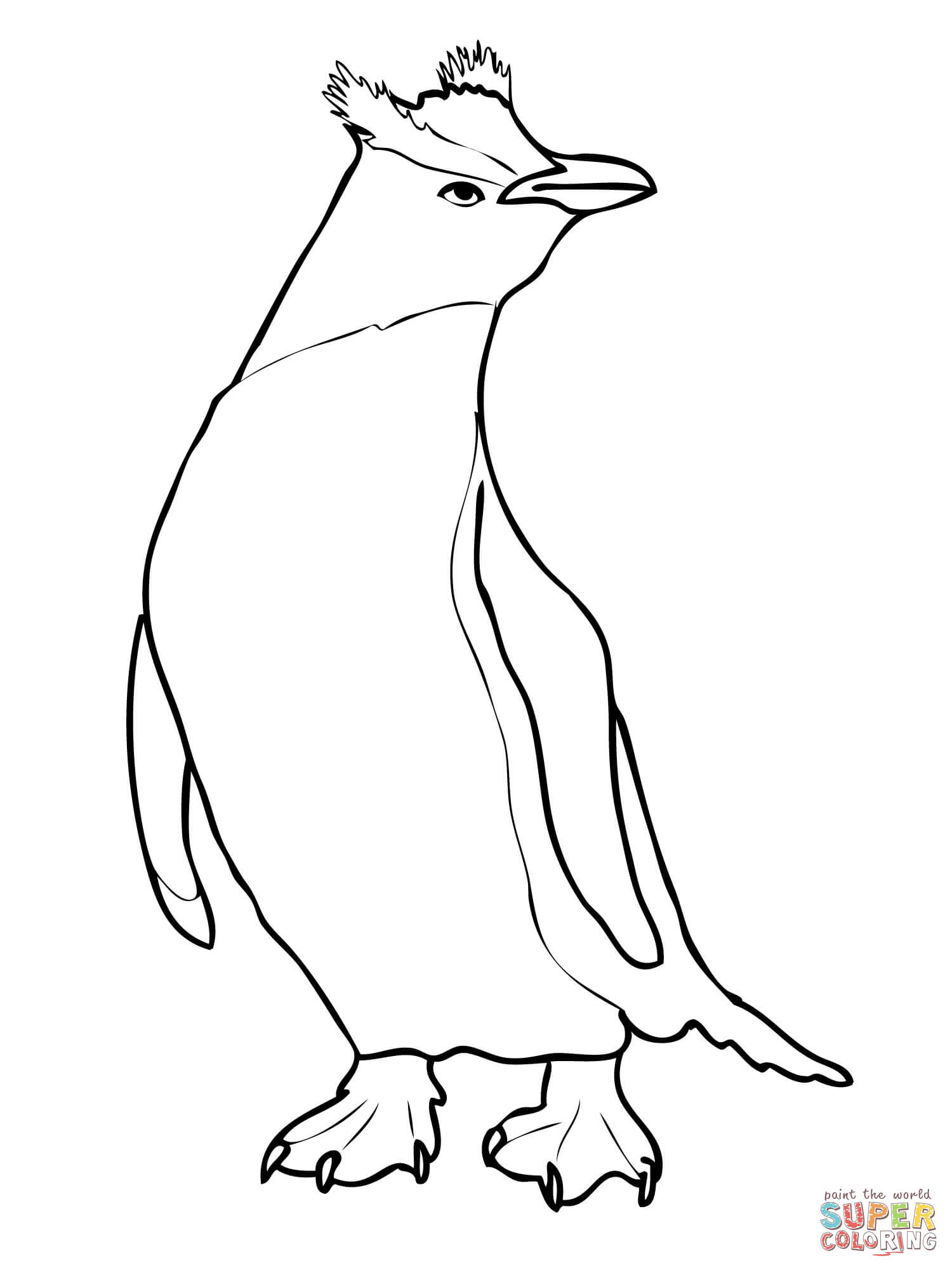 1500x2000 Erect Crested Penguin Coloring Page Free Printable Coloring Pages