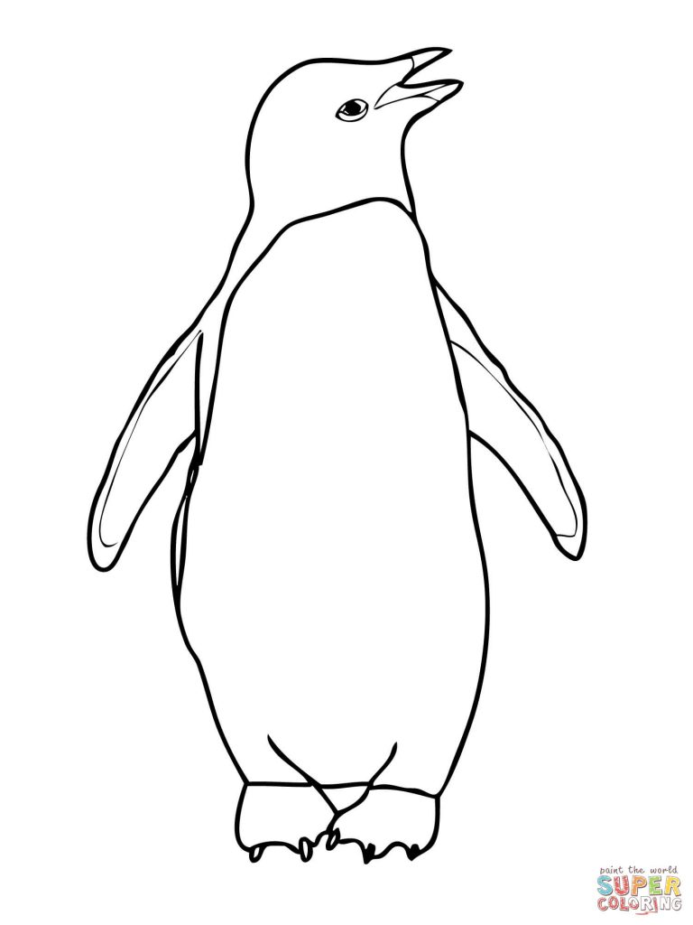 768x1024 Penguin Coloring Pages
