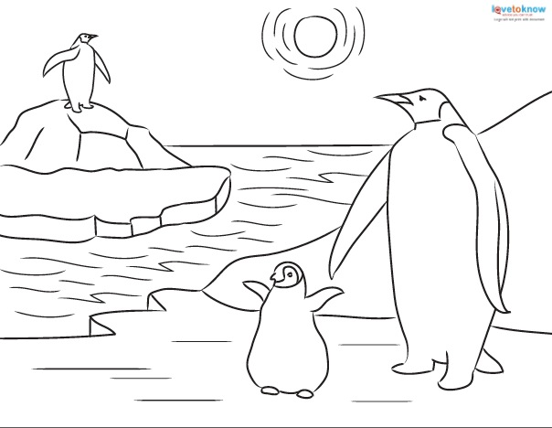 604x468 Printable Penguin Coloring Sheets And Facts For Kids Lovetoknow