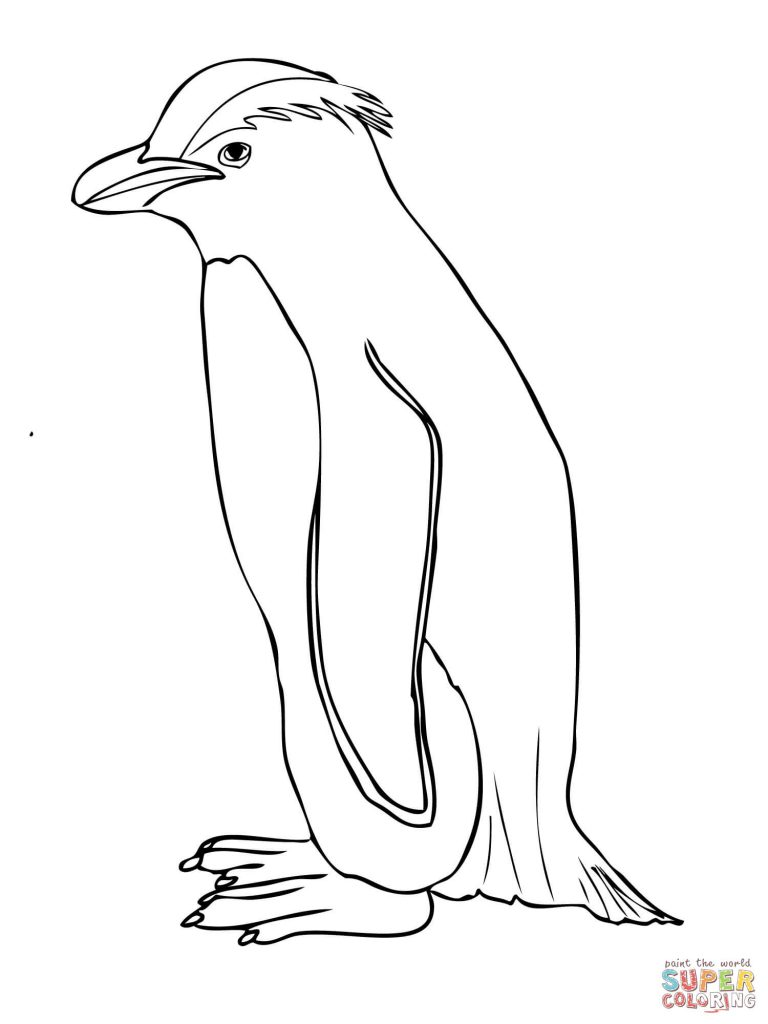 768x1024 Skiing Penguin Coloring Pages Printable Free Sensational Page