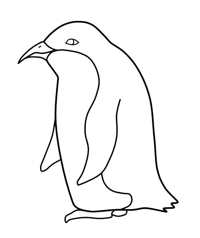 700x832 Penguin Pictures For Kids