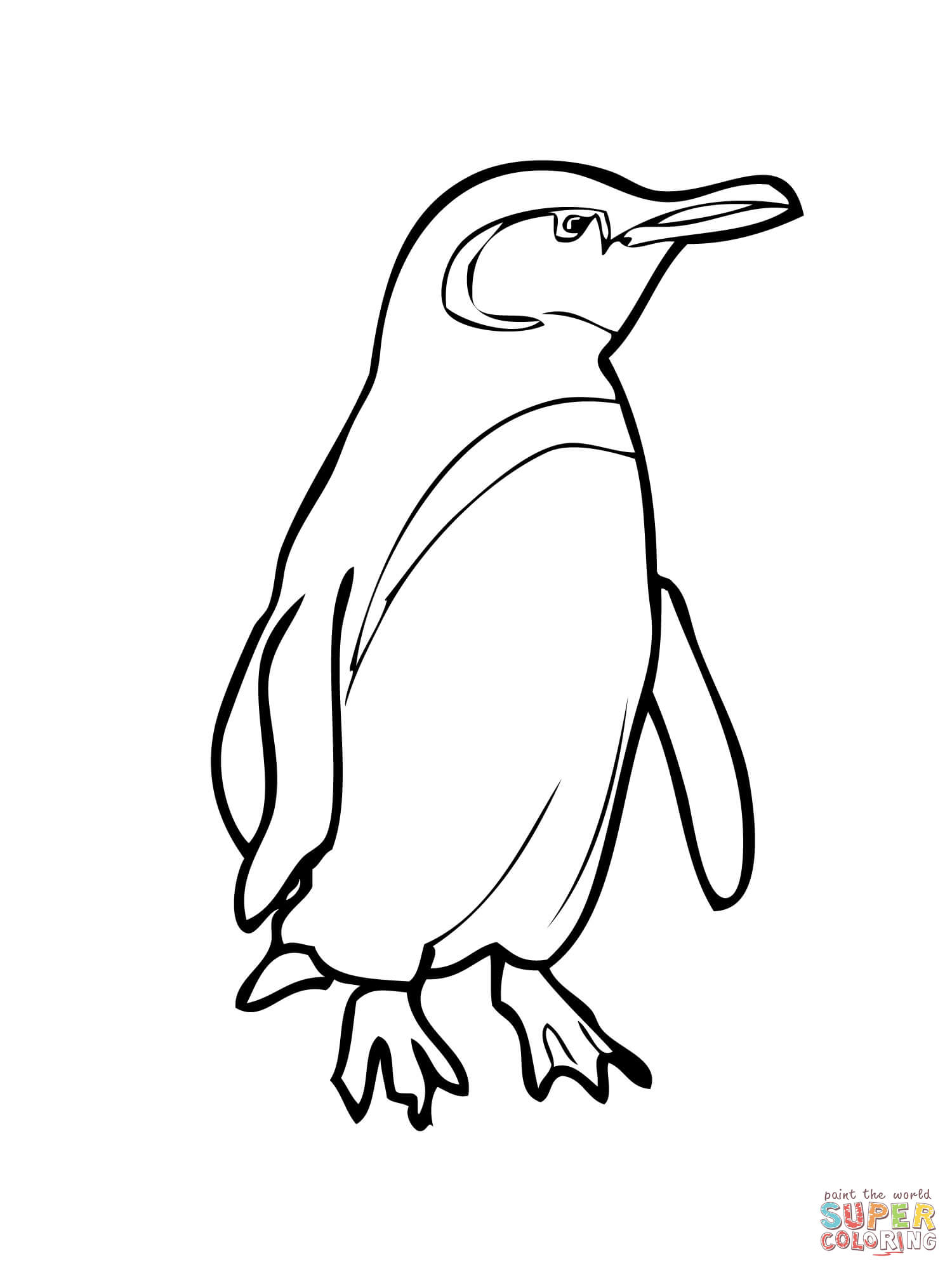 1500x2000 Yellow Eyed Penguin Drawing
