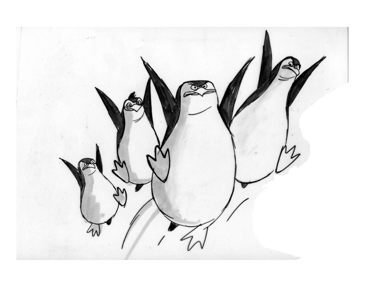 Line Drawing Penguin : Penguins of madagascar drawing at getdrawings.com free for