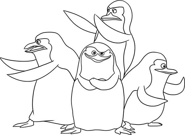 600x437 Coloring Pages Madagascar Coloring Pages Surprising Penguins