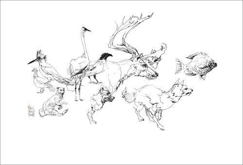 500x340 Art Tools Of Marc Holmes Parka Blogs