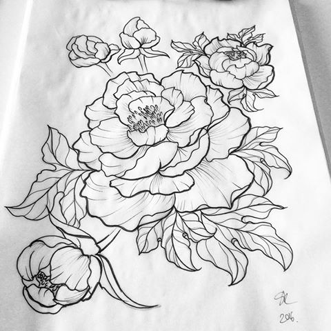 480x480 Amazing Peony Outline Tattoos
