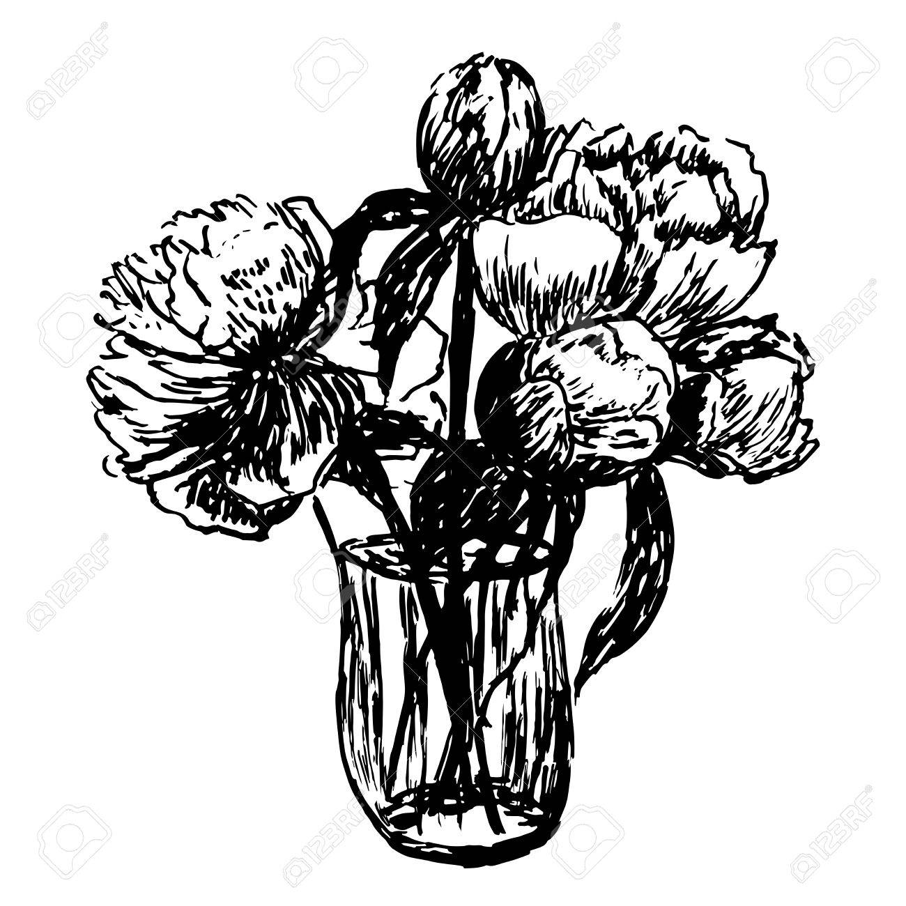 1300x1300 Drawing Delicate Bouquet Of Peonies Vector Illustration Royalty