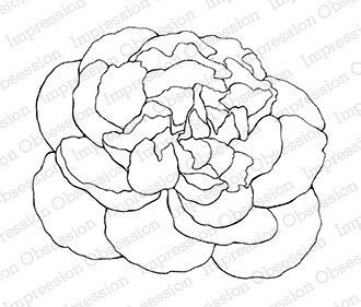 330x281 Impression Obsession Peony Outline