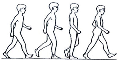 388x195 Correct Walking Is A Core Event