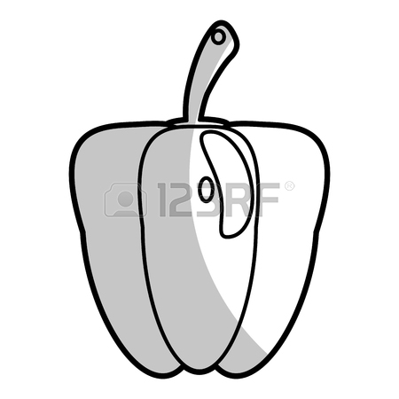 450x450 Drawing Pepper Half Nutrition Food Vector Illustration Eps 10