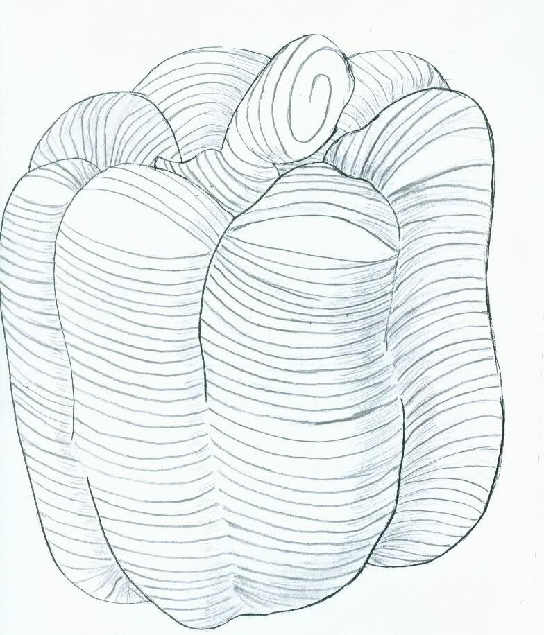 784x916 Simple Contour Line Drawings