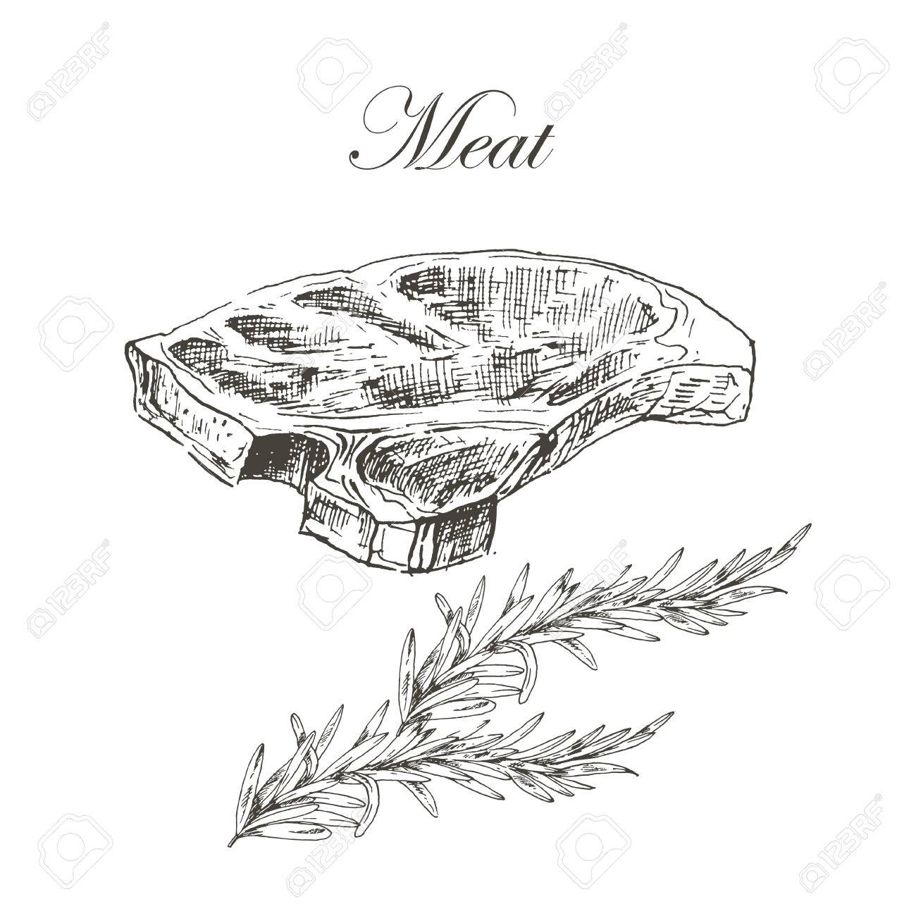 1300x1300 Vector Steak Meat Hand Drawing With Pepper And Rosemary. Detailed