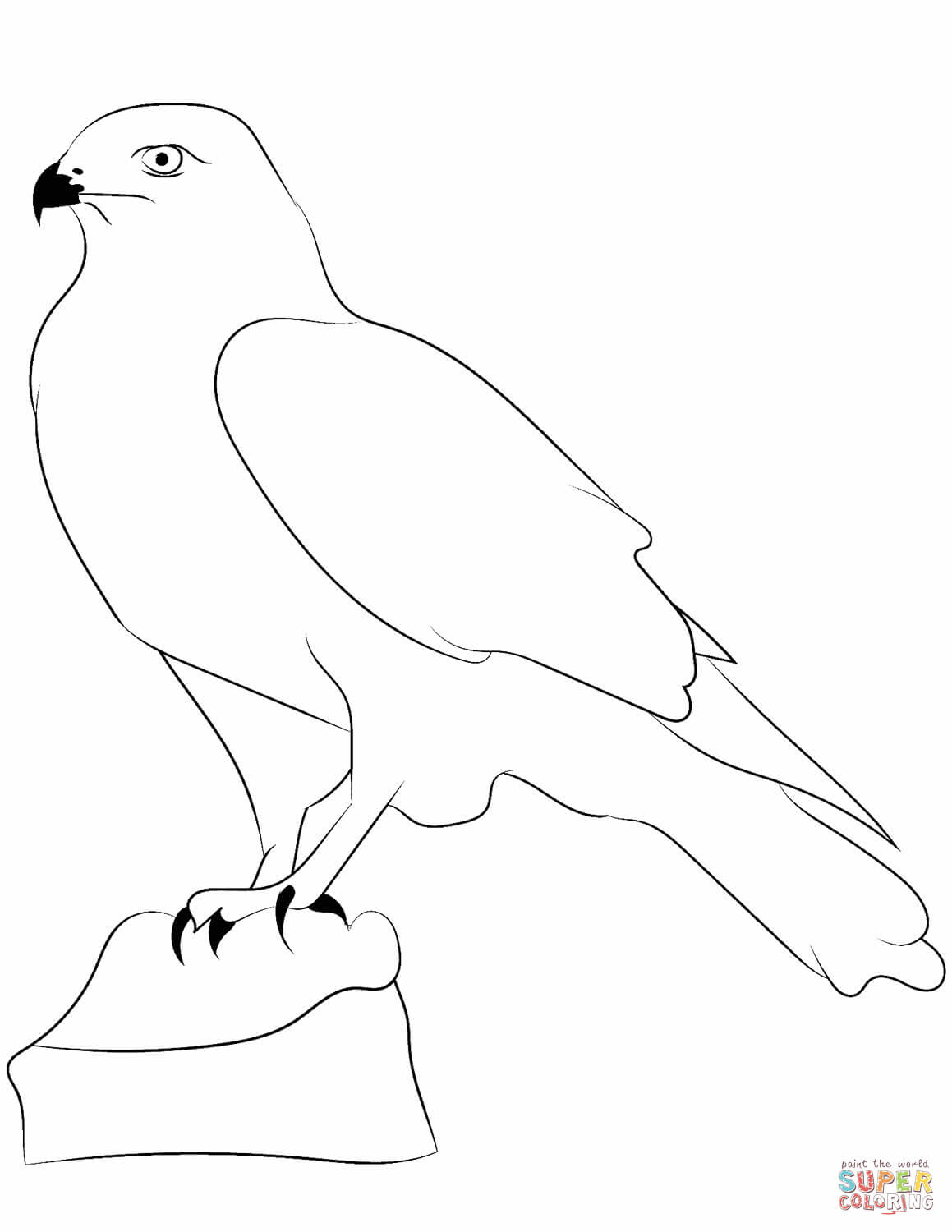 1159x1500 Falcons Coloring Pages Free Coloring Pages