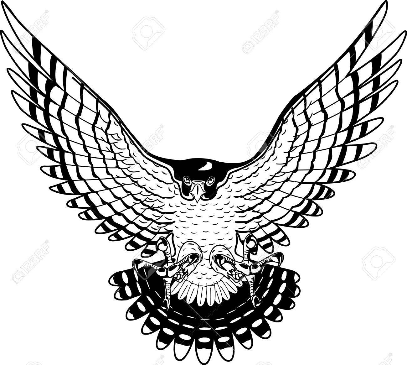 1300x1165 Peregrine Falcon Illustration. Royalty Free Cliparts, Vectors,