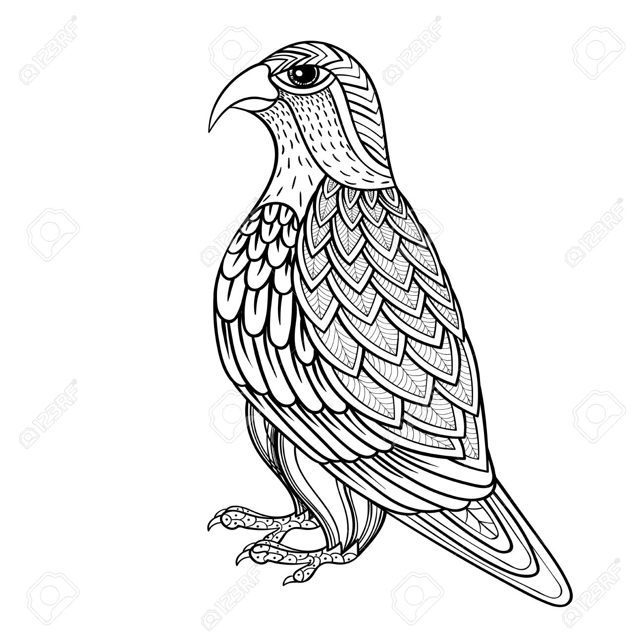 1300x1300 Zentangle Vector Falcon, Bird Hawk Of Prey, Predatory For Adult