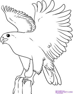 236x302 Peregrine Falcon Colouring Doberman Coloring Pages