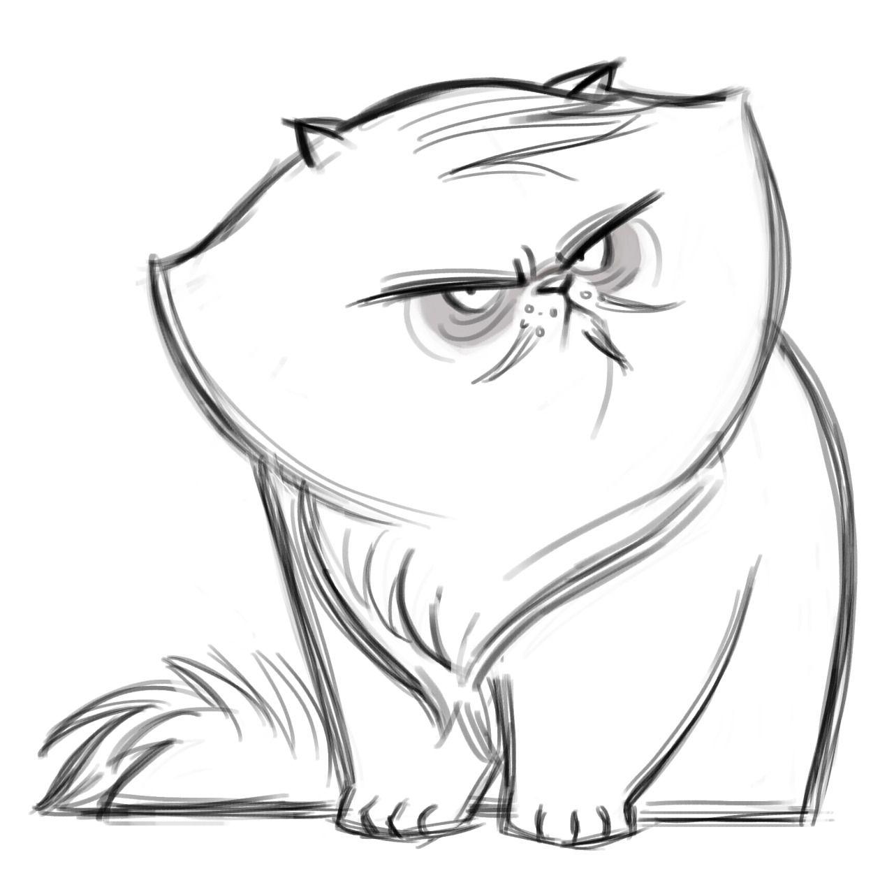 Persian Cat Drawing