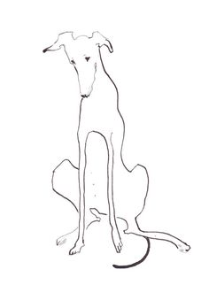 Personalized Dog Line Drawing Art