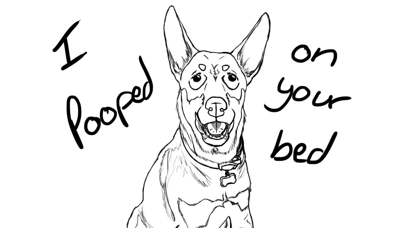 1364x767 Drawings Of Pets Share Yours!