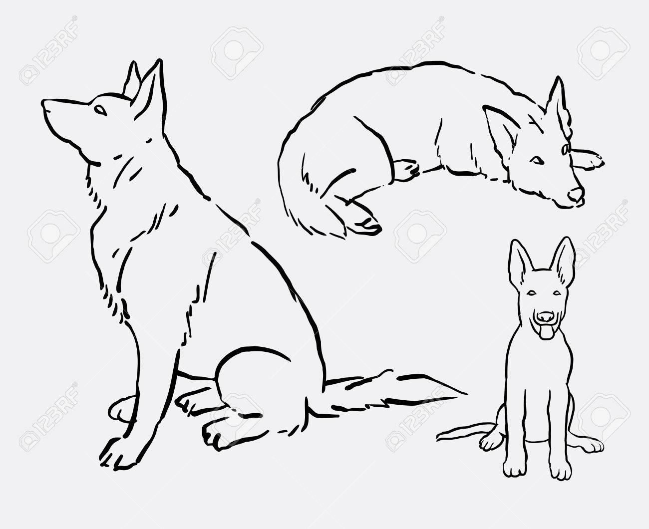 1300x1060 German Shepherd Pet Dog Animal Drawing. Good Use For Symbol