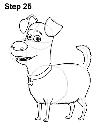 404x523 How To Draw Max From The Secret Life Of Pets