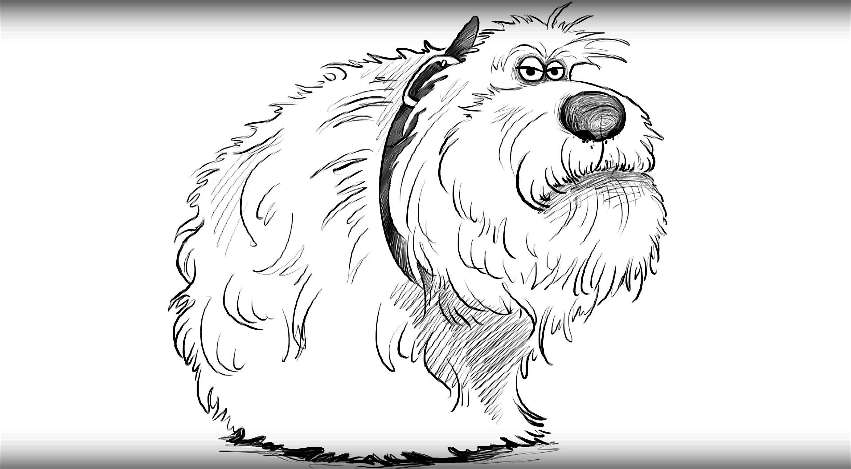 3342x1844 How To Draw A Dog Duke From The Secret Life Of Pets