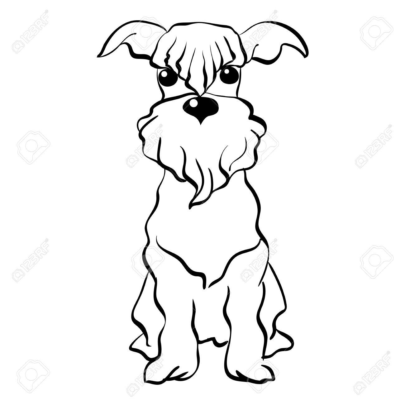 1300x1300 Sketch Funny Dog Miniature Schnauzer Breed Sitting Breed Hand