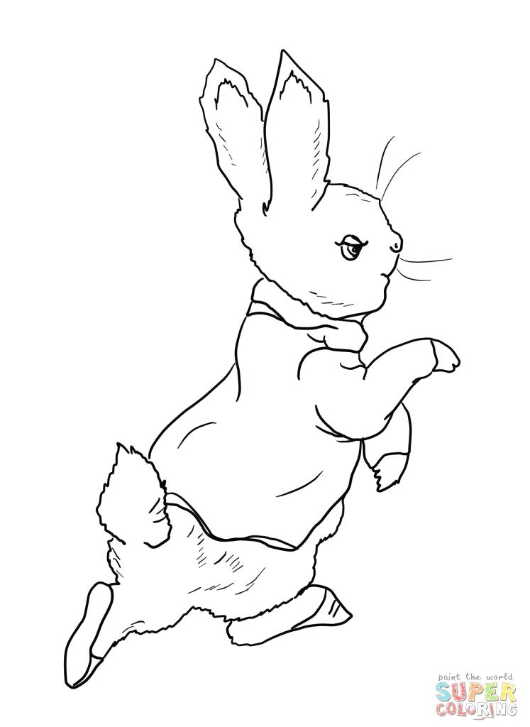747x1024 Entertaining Peter Rabbit Coloring Pages Fee Elegant On Free