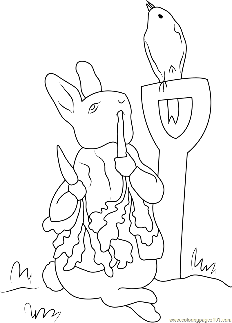 800x1112 Peter Rabbit In Farm Coloring Page