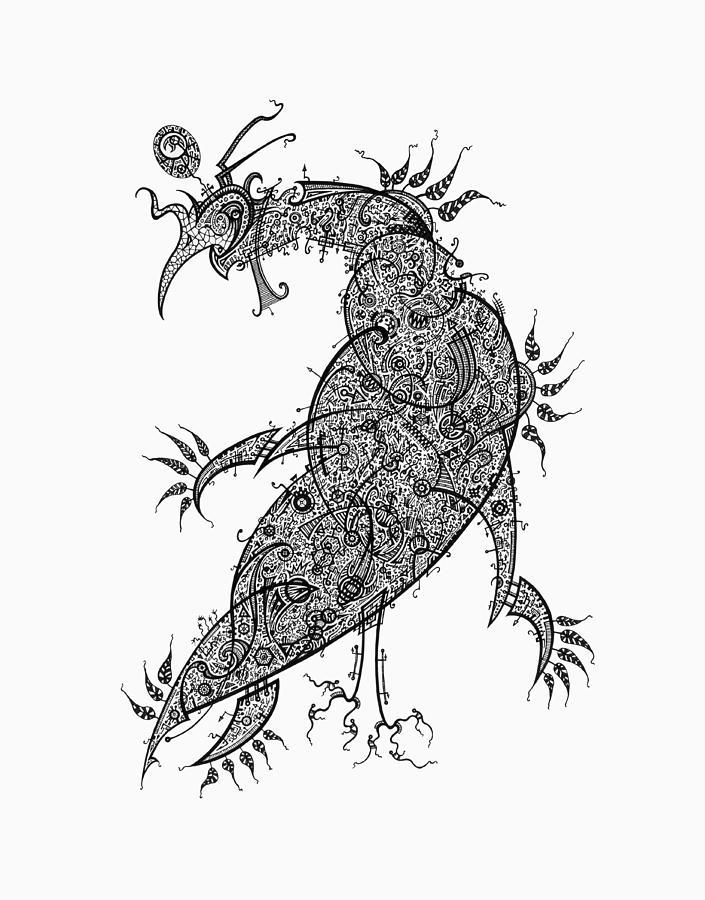 705x900 Pheasant Drawing By Raf Podowski