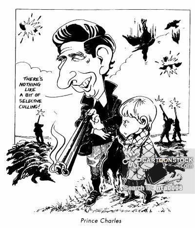400x468 Pheasant Hunting Cartoons And Comics