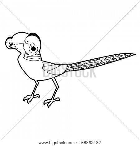 450x470 Pheasant Images, Illustrations, Vectors