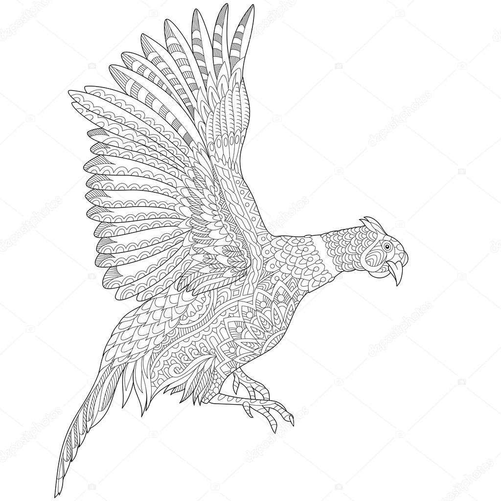 1024x1024 Zentangle Stylized Pheasant Bird Stock Vector Sybirko