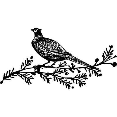 400x400 Christmas Pheasant