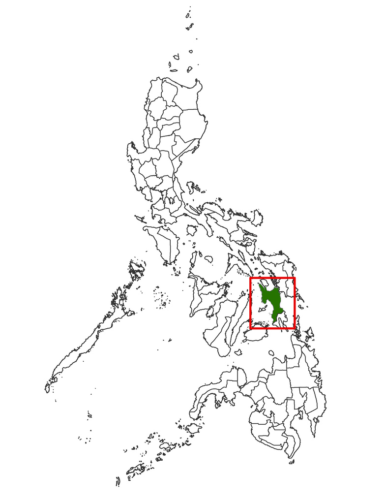 783x1024 Map Showing The Province Of Leyte, Philippines Overview