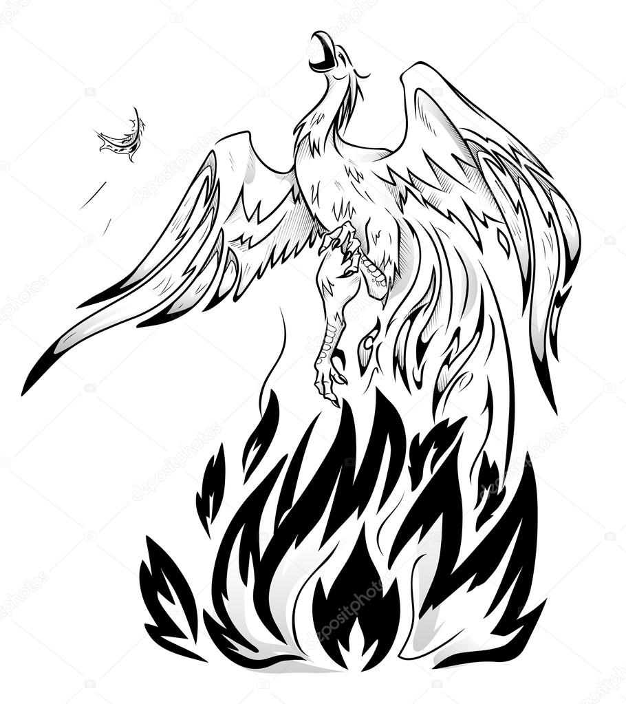 910x1023 Mythical Phoenix Bird Stock Vectors, Royalty Free Mythical Phoenix